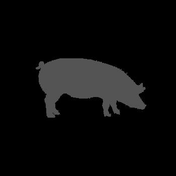 Rôti de porc à la moutarde